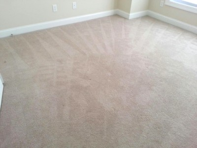 Professional Carpet Cleaning in Onslow, Pender and New Hanover Counties